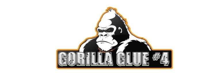 gorrilla Glue logo
