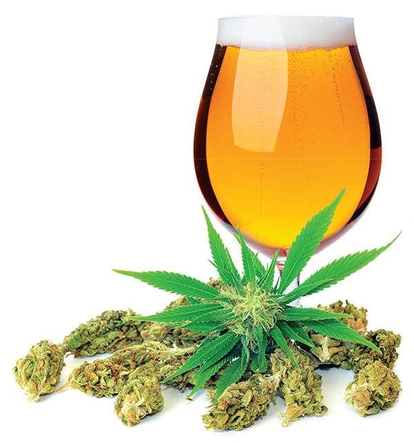 jak łączyć piwo z marihuaną