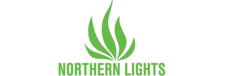 northern-light logo