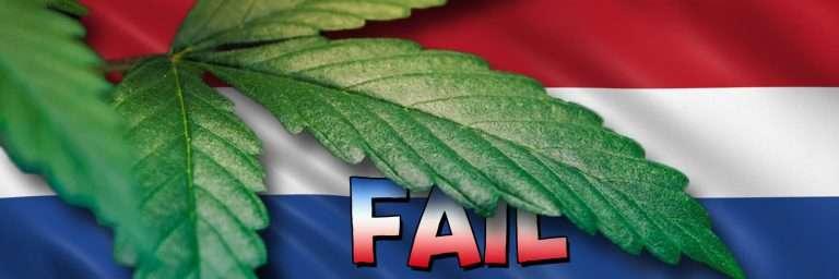 Holendrzy nie zdają egzaminu w pierwszym krajowym przetargu na uprawę marihuany do celów rekreacyjnych