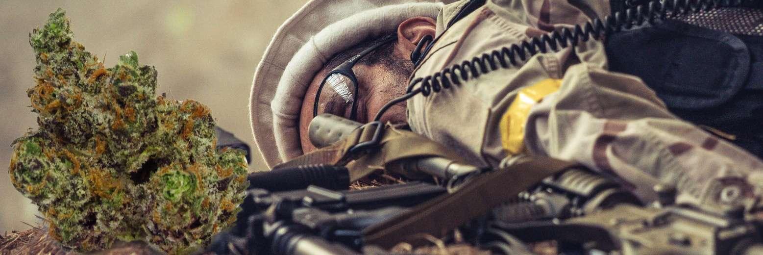 Jak konopie pomagają pacjentom z PTSD?