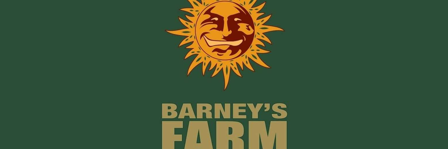 Imperium Uśmiechniętego Słońca – Barney's Farm Seeds