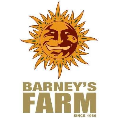Barney's Farm Seeds odmiany konopi