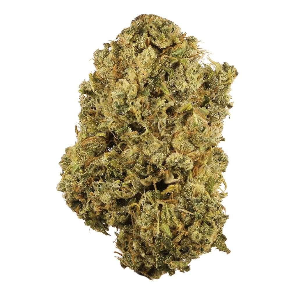 odmiana marihuany durban poison